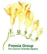 freesia events logo