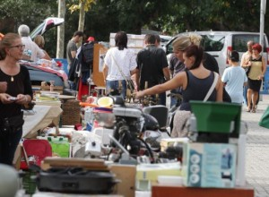 freesia events carboot february 2017