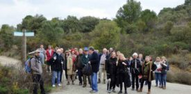 Freesia Annual Sponsored Walk Participants