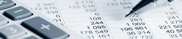 Freesia Events Accounting Header